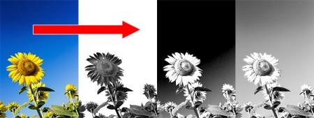 写真の白黒加工