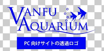PC向けサイトの透過ロゴ