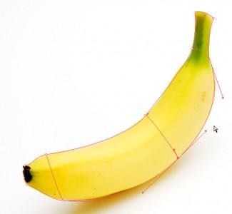 バナナの形状を精密化